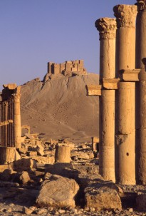 Arab castle,Palmyra